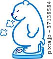 メタボ 熊 肥満のクマ シロクマ 37138584