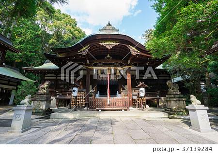 京都 岡崎神社  37139284