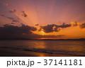 初日の出 朝焼け 日の出 朝 37141181