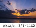 初日の出 朝焼け 日の出 朝 37141182
