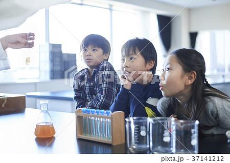 小学校 37141212