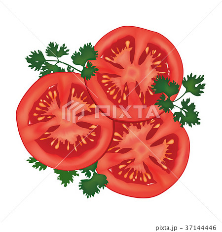 tomato slice food vegetable sign natural productのイラスト素材