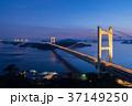 瀬戸大橋ライトアップ夜景 37149250