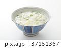 七草粥 37151367