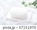 石鹸 37151970