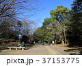 町田市 芹が谷公園 公園の写真 37153775