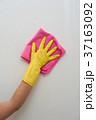 女性 メス 手袋の写真 37163092