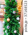Christmas tree 37168523