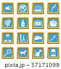 紺碧 獣医 アイコンのイラスト 37171099