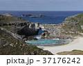 小笠原諸島 南島 扇池の写真 37176242
