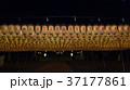 護国神社 万燈祭 37177861