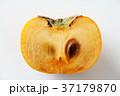 柿 果物 フルーツの写真 37179870