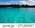 石垣島 川平湾 湾の写真 37180097