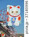 正月祝い飾り浅草 37180996