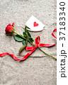 一輪の赤い薔薇とメッセージカード ニット生地背景 37183340
