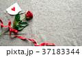 一輪の赤い薔薇とメッセージカード ニット生地背景 37183344