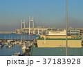 横浜 横浜港 港の写真 37183928