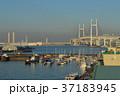 横浜 横浜港 港の写真 37183945
