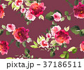 Seamless summer pattern with watercolor flowers 37186511
