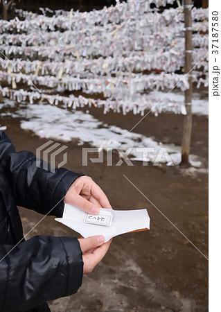 正月の神社 おみくじを開く子供 37187580
