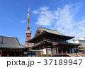 増上寺 寺院 東京タワーの写真 37189947