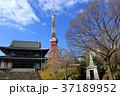 増上寺 寺院 東京タワーの写真 37189952