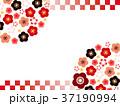 梅03_1 37190994