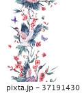 つる ツル 鶴のイラスト 37191430