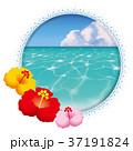 海のアイコン 37191824
