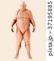 立体 3D 3Dのイラスト 37195885