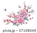 水彩画 花 咲くのイラスト 37198049