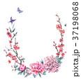 水彩画 背景 花のイラスト 37198068