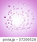 37200528