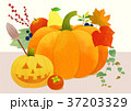 Autumn object illustration - pumpkin, flowes, guitar, book, postcard and etc. 005 37203329