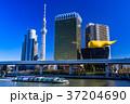 《東京都》浅草から眺めるスカイツリー 37204690