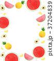 イラスト イラストレーション 挿絵のイラスト 37204839
