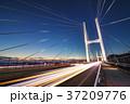 女神大橋 橋 夜景の写真 37209776