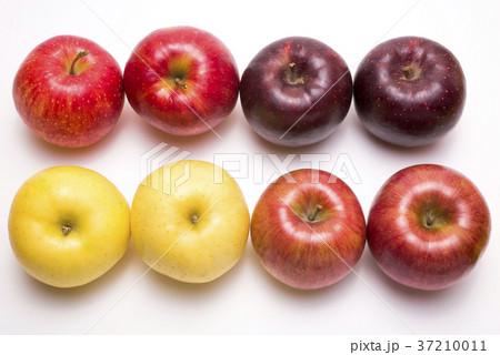 白背景の色々なリンゴ 37210011