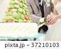 結婚式 ケーキ入刀 イメージ2 37210103