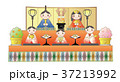 お雛様 雛壇 雛人形のイラスト 37213992