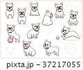 フレンチブルドッグ 犬 戌年のイラスト 37217055