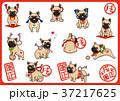 フレンチブルドッグ 犬 戌年のイラスト 37217625