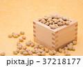 枡から溢れる節分の福豆 黄色の和紙の背景 c-1  右寄せ 37218177