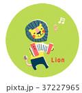 アコーディオンを弾くライオン 37227965