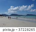 パトンビーチ 37228265