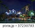 瀬戸大橋記念公園 瀬戸大橋記念館 ライトアップの写真 37230783