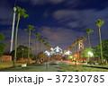 瀬戸大橋記念公園 瀬戸大橋記念館 ライトアップの写真 37230785
