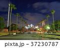 瀬戸大橋記念公園 瀬戸大橋記念館 ライトアップの写真 37230787