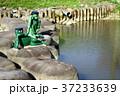 荒鍋の河童 37233639