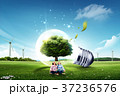 電球 球根 球の写真 37236576